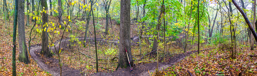 Freshly dug singletrack at Dorrance Forest Preserve.