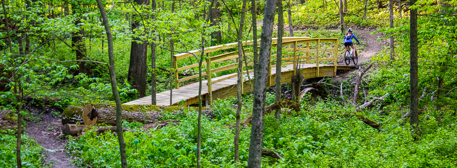 The green trail passes through a deep ravine with large Glulam bridge.