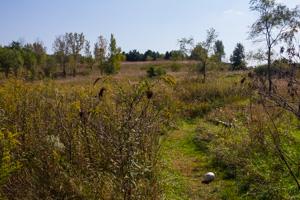 Prairie trail segment at Geneseo Prairie Park.